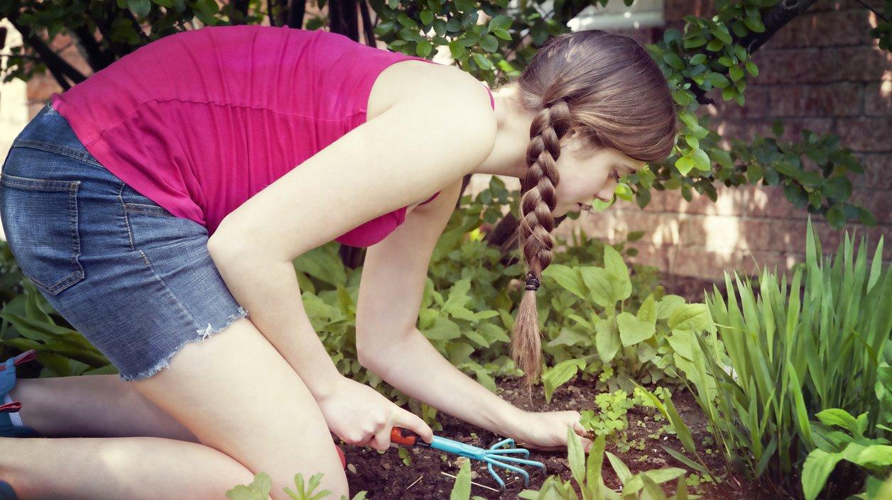 Är trädgårdsmästare yrket för dig?