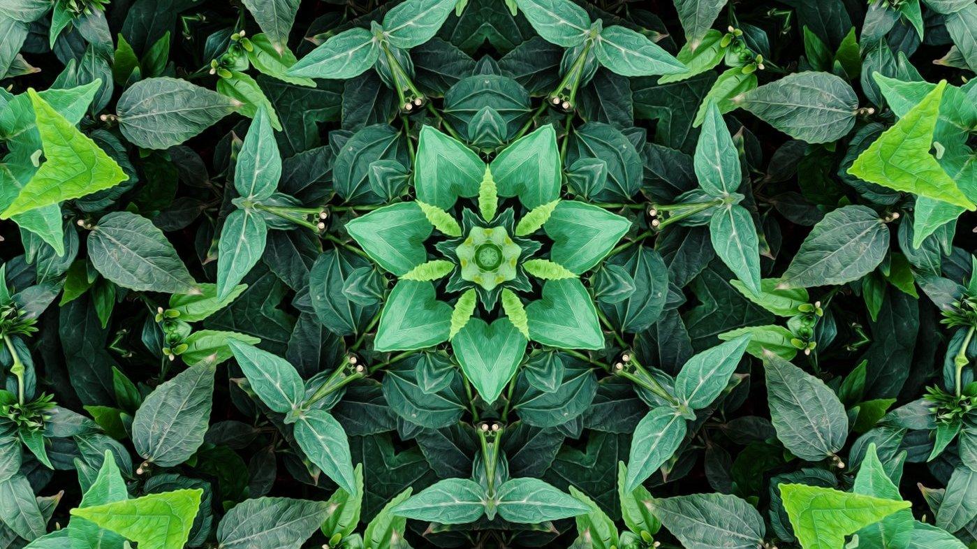 Symmetrin omkring dig