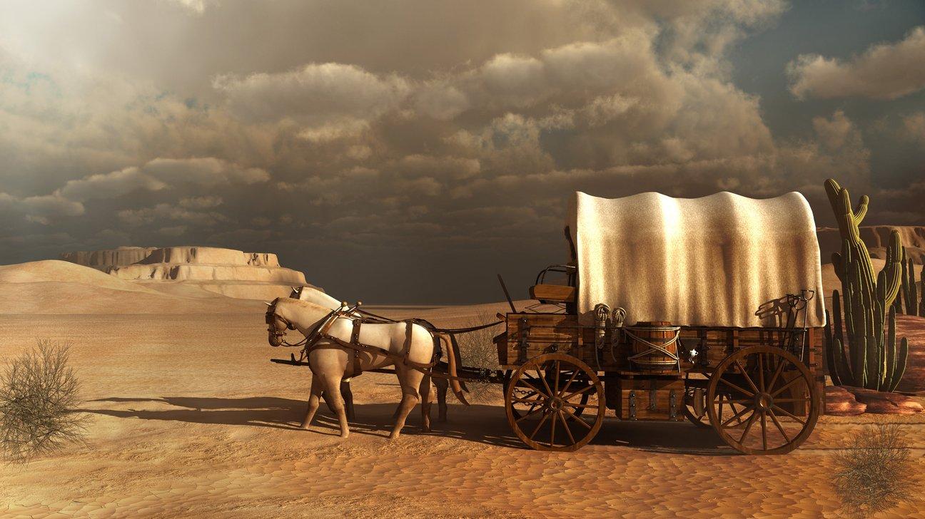 När nybyggarna flyttade till västra USA i mitten på 1800-talet använde de täckta vagnar. Vagnarna drogs av mulåsnor, oxar eller hästar.