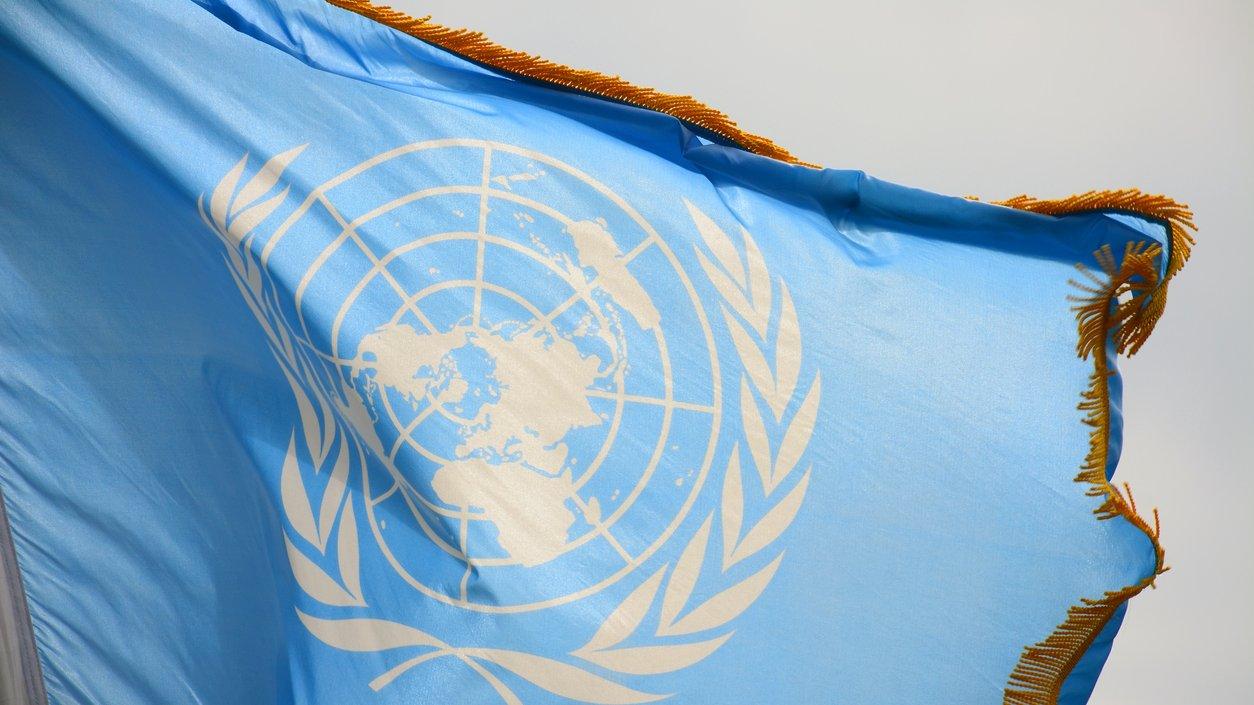 FN-flaggan är vit och blå. Den föreställer en världskarta som omges av olivkvistar. Olivkvistar är en symbol för fred.
