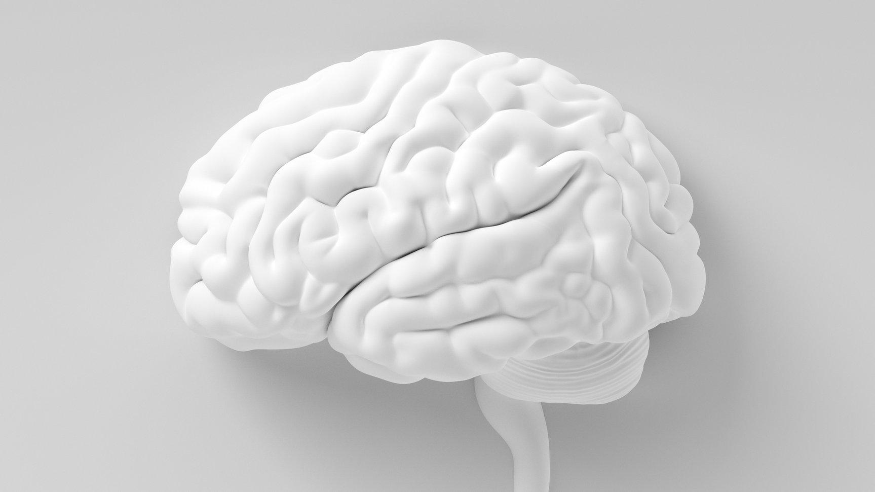 I hjärnan lagras dina minnen, och du kan påverka hur bra din hjärna jobbar med att lagra dem.