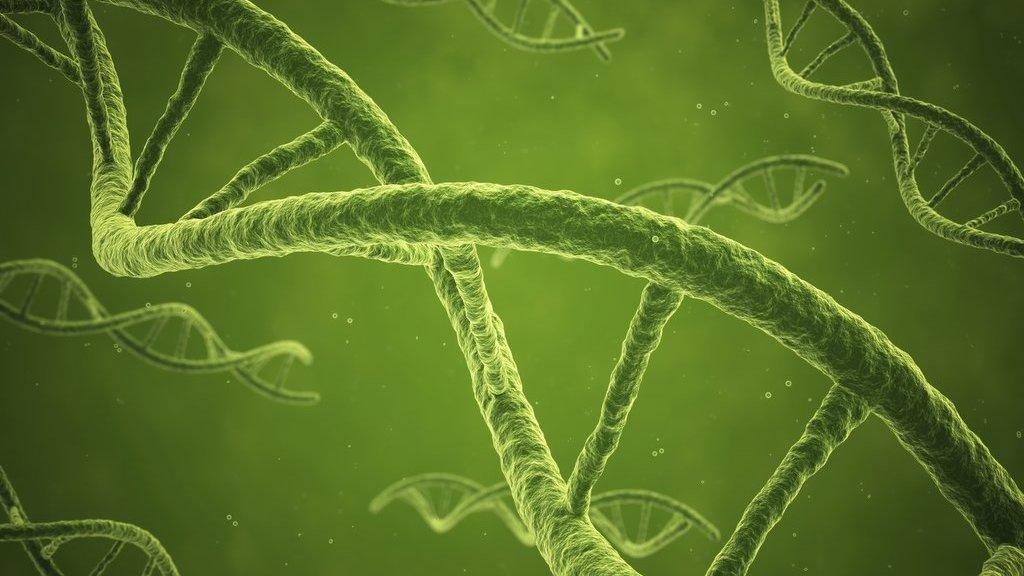 DNA-spiral.