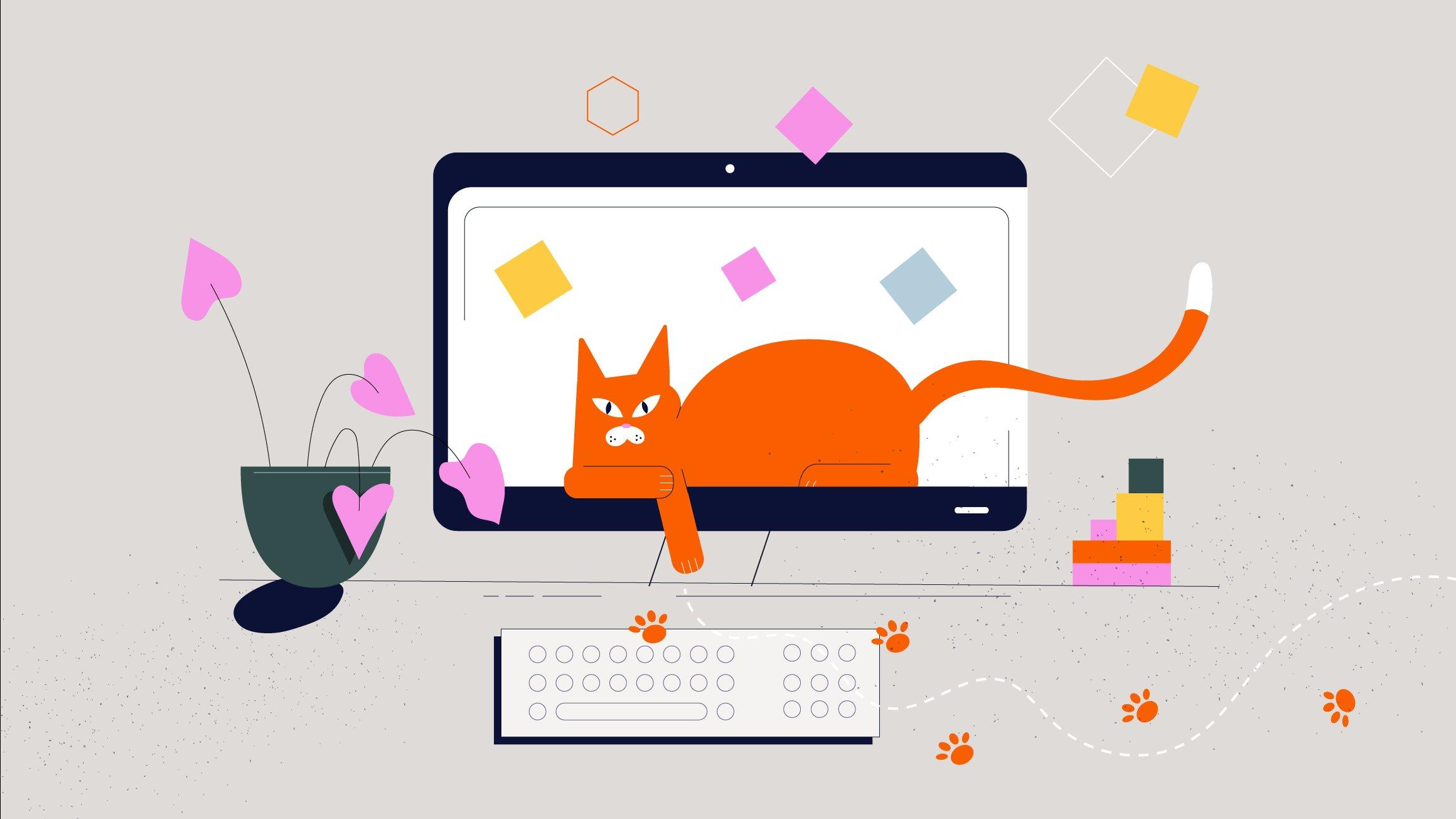 Flytta på katten – blockprogrammering