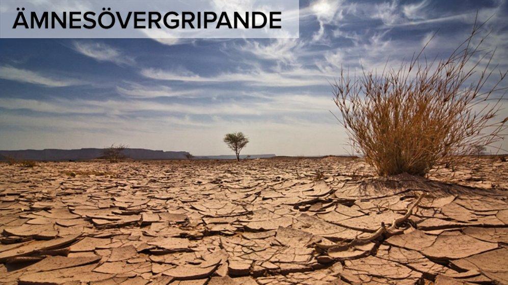 Om klimatförändringarna fortsätter kommer fler platser att drabbas av torka.